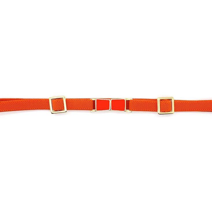 cinto-royalz-elastico-scarlett-laranja